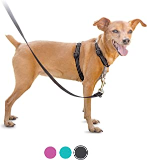 PetSafe 3 in 1 Harness - No-Pull Dog Harness - for X-Small, Small, Medium and Large Breeds - from the Makers of the Easy W...