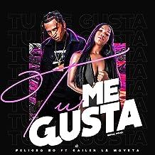 Tu Me Gusta (feat. Gailen La Moyeta)