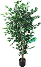 Artificial Ficus Tree with Variegated Leaves and Natural Trunk, Beautiful Fake Plant for Indoor-Outdoor Home Décor-5 ft. T...