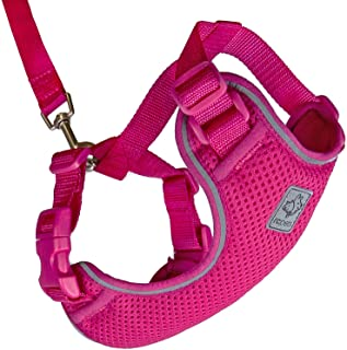 RC Pet Products Adventure Kitty Harness, Cat Walking Harness, Small, Raspberry (53803014)