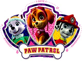 Best paw patrol cakes for girls Reviews