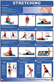 Stretching-Lower Body Laminated Poster/Chart; How to Stretch - Improve Flexibility -