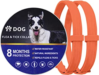2 Pack Flea Collar for Dogs, Natural and Hypoallergenic Flea and Tick Collar for Dogs, Allergy Free Dog Flea Collar