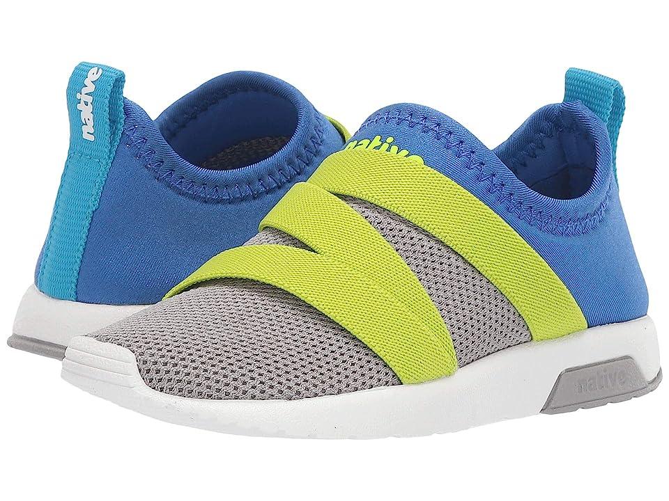 Native Kids Shoes Phoenix (Toddler/Little Kid) (Pigeon Grey/UV Blue/Shell White) Kids Shoes