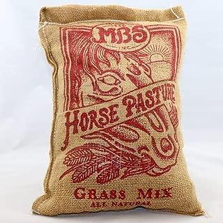 horse grass plant