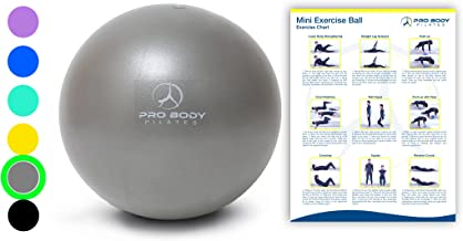 Mini Exercise Ball - 9 Inch Small Bender Ball for Stability, Barre, Pilates, Yoga, Core Training and Physical Therapy