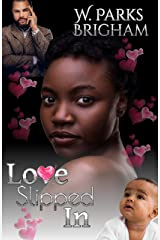 Love Slipped In Kindle Edition