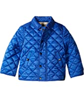 Burberry Kids - Mini Luke Quilted Jacket (Infant/Toddler)