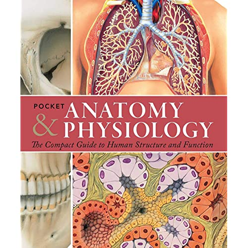 Pocket Anatomy & Physiology: The Compact Guide to the Human Body and How It Works