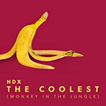 The Coolest (Monkey in the Jungle)