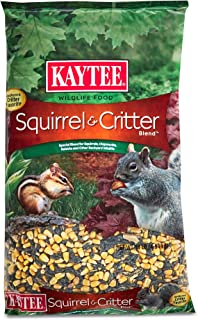 Best 3d squirrel food Reviews