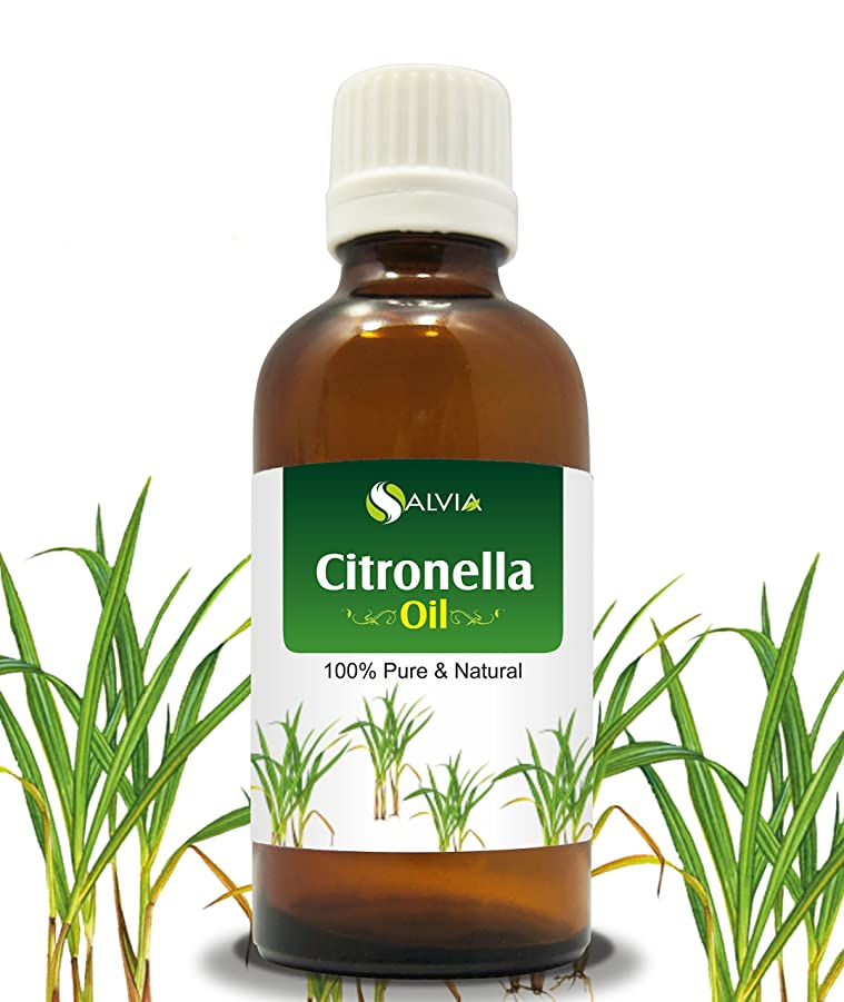 肉屋ジーンズ杭CITRONELLA OIL 100% NATURAL PURE UNDILUTED UNCUT ESSENTIAL OIL 15ML