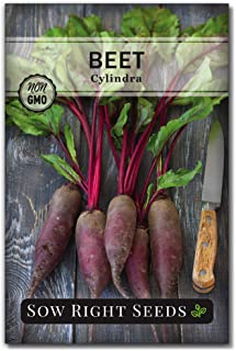 Sow Right Seeds - Cylindra Beet Seed for Planting - Non-GMO Heirloom Packet with Instructions to Plant a Home Vegetable Ga...