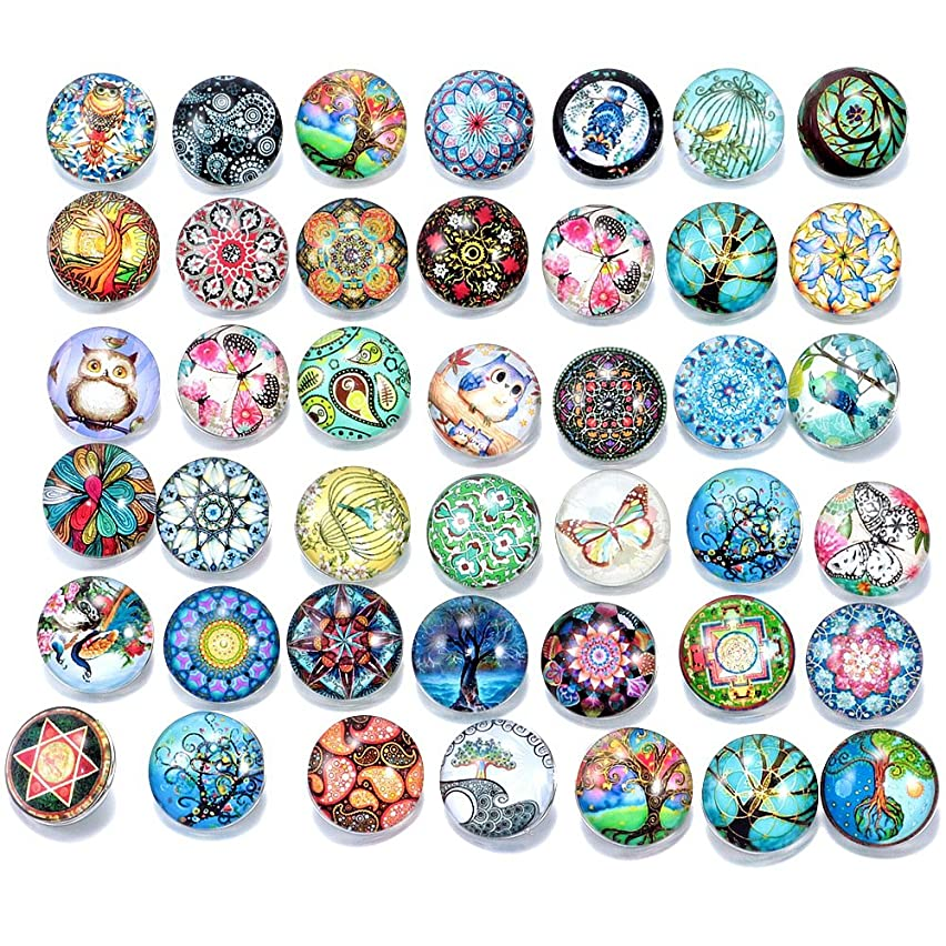 Ginooars Pack of 50 Mixed Style Glass Snaps Charm Buttons 18/20mm for Interchangeable Snaps Jewelry