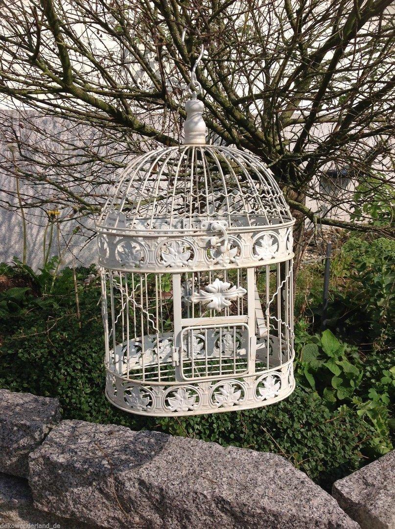 Jaulas de la jaula de la jaula de la jaula de pájaro decorativa de maceta de diseño de jardín de estilo rústico: Amazon.es: Hogar