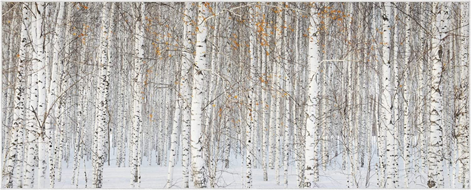 Russian Winter Landscape White Birch Trees Blanket Scarf For Women 70.9x27.6 Inch Polyester Women Scarfs Soft Comfortable Scarf For Women Suitable For Parties Work Travel