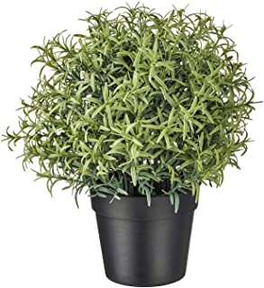 """Digital Shoppy IKEA Artificial Potted Plant, Rosemary, 9 cm (3 ½"""")"""
