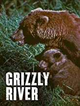 Grizzly River