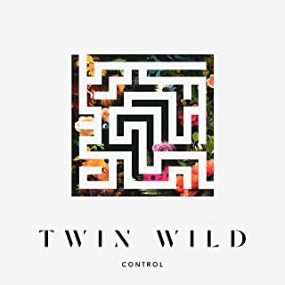 Best control twin wild Reviews