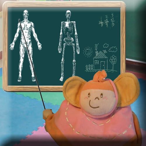 Anatomía divertida (Funny anatomy)