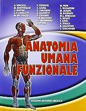 Permalink to Anatomia umana funzionale PDF