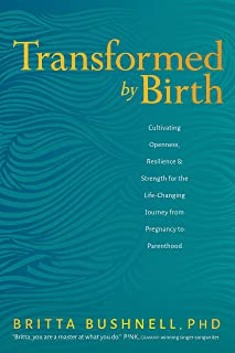 Transformed by Birth: Cultivating Openness, Resilience, and Strength for the Life Changing Journey from Pregnancy to Paren...