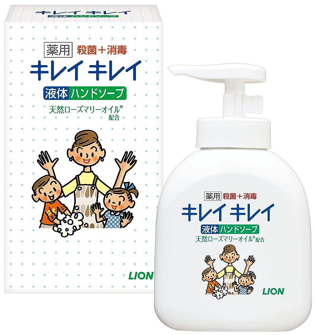 高度抑止するブロンズキレイキレイ薬用液体ハンドソープ250ml ノベルティギフト用化粧箱入