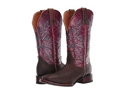 Dan Post Pasadena (Brown/Fuchsia) Cowboy Boots