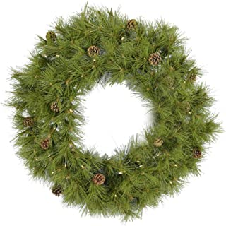 Fraser Hill Farm 48-in. Eastern Pine Artificial Holiday Wreath with Clear Battery-Operated LED String Lights, FFEP048W-5GRB Christmas Decoration, 48 Inch, Green