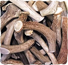 WhiteTail Naturals Premium Deer Antlers for Dogs (1 lb. Pack) All Natural Antler Chews | A Grade, Made in USA Horn Dog Bone Chew for Medium and Big Breeds | Power Chewer
