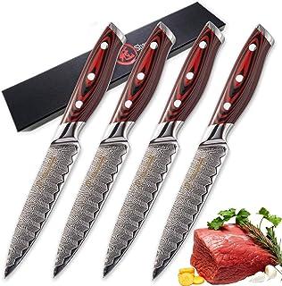 couteau Damascus Couteaux de cuisine 4 PCS Steak Couteau Ensemble 67 Couches VG10 Japonais Damas Damas En Acier Rouge G10 ...