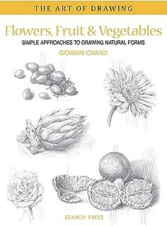 simple vegetable drawings