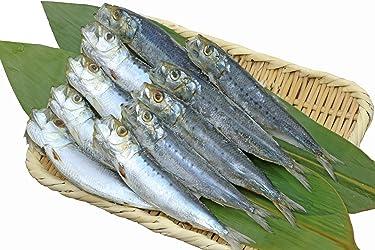 [冷蔵] 魚の北辰 いわし丸干し 10尾 250g