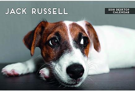 Jack Russell 2018calendario