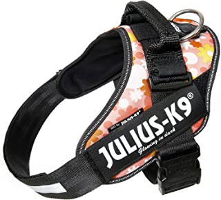 Julius-K9 IDC Powerharness, Dog Harness