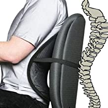 Sungpunet Cool Vent Mesh Back Lumbar Support for Office Chair, Car, and Other