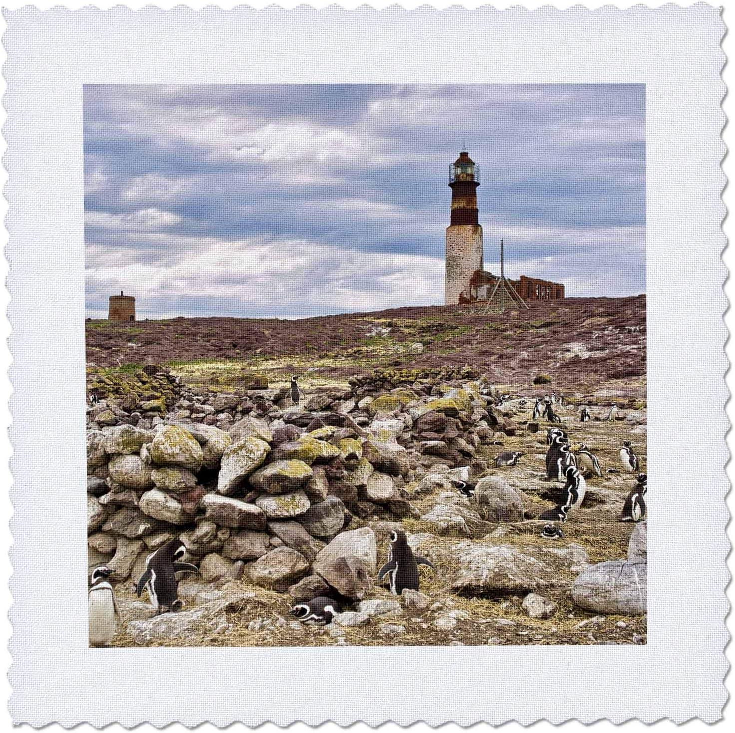 3dRose Argentina Santa Free shipping Cruz. Magellanic Island penguin Purchase Penguin