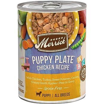 Merrick Grain Free All Breed Sizes Wet Dog Food