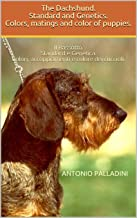 The Dachshund. Standard and Genetics. Colors, matings and color of puppies.: Il Bassotto. Standard e Genetica. Colori, acc...