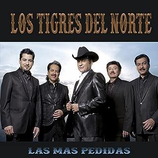 Best la tumba falsa Reviews