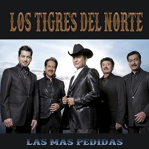 Image result for los tigros del notre