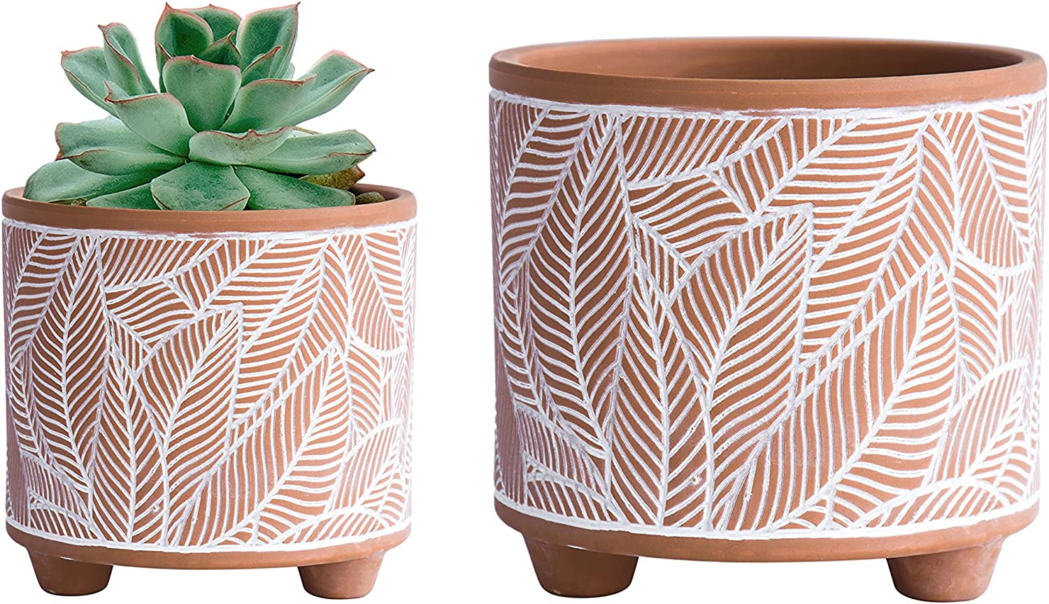 Set of Brand Cheap Sale Venue 2 In a popularity Terracotta Planter Pots 6.4 Pa 4.4 Inch Leaves