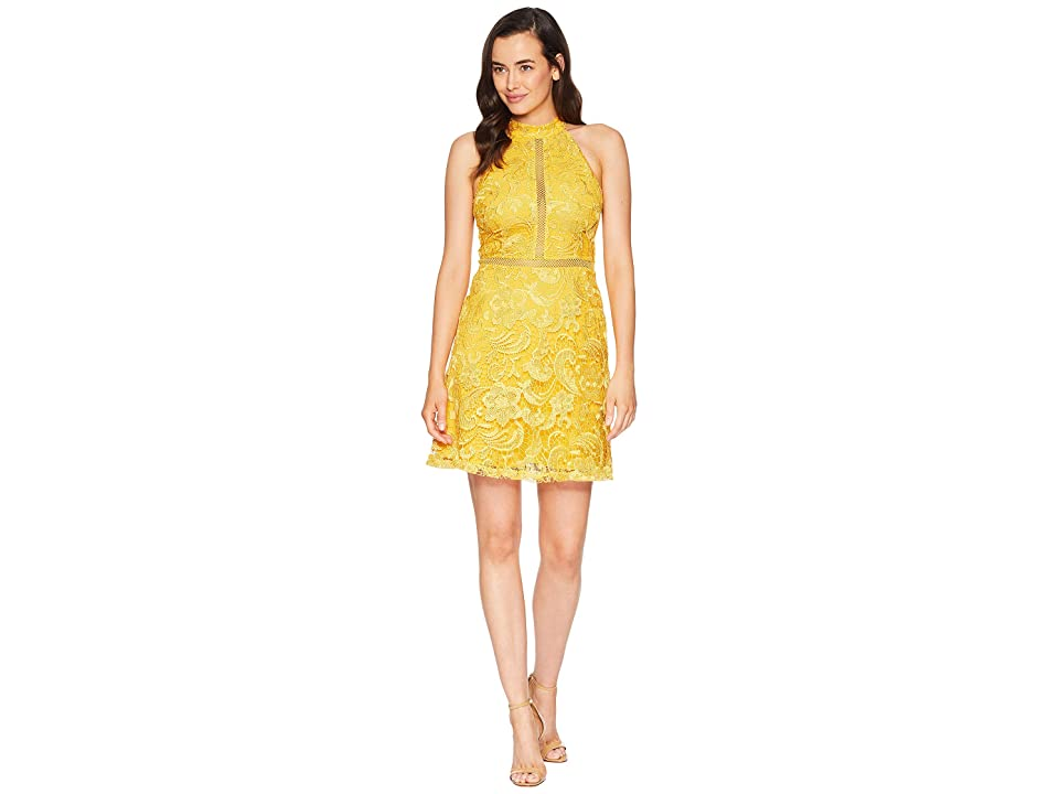 ALEXIA ADMOR Mock Neck Fit Flare Lace Dress (Gold) Women