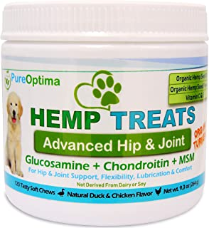 dog supplement for joint pain