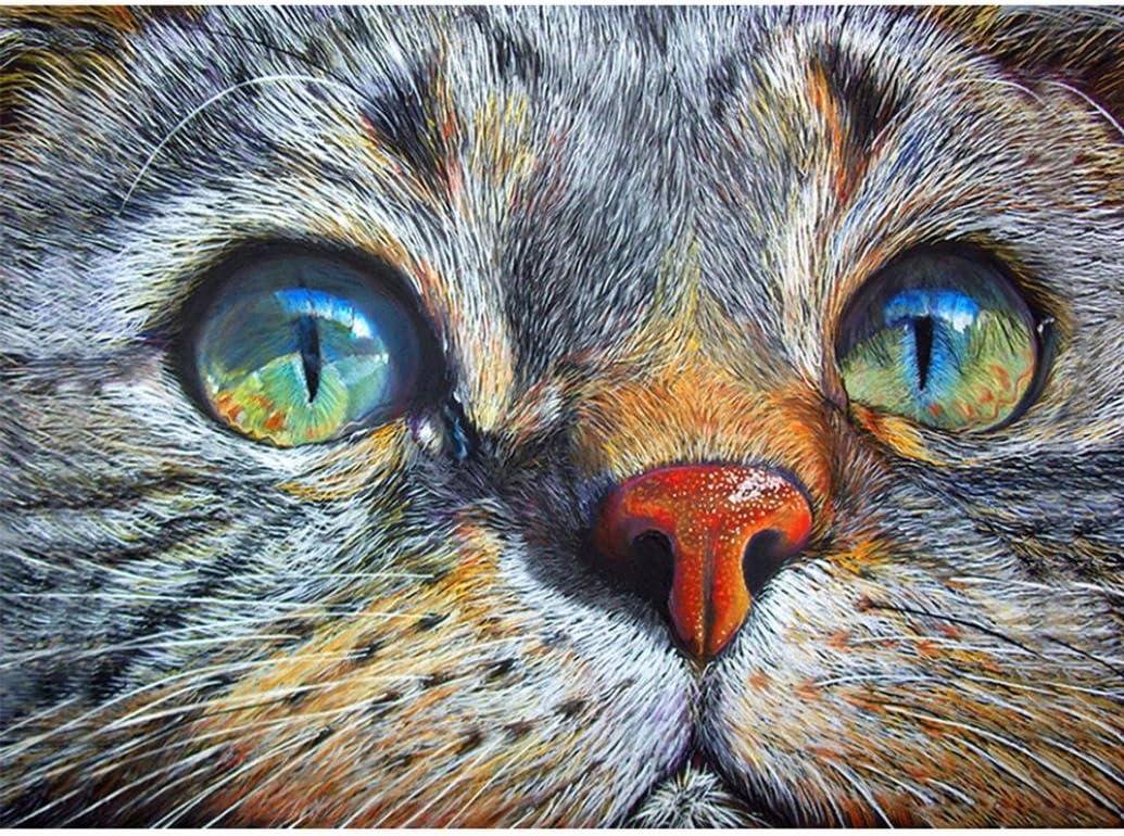 Quaant 5D Diamond Painting Overseas parallel Luxury import regular item Cat DIY 3 Cartoon