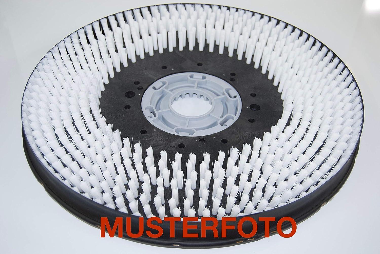 Partmax® Schrubbbürste hart für Tennant 8010 8010 8010 (Arbeitsbreite 1000 mm), Bürste B07NNFDZNK 5d1c9b