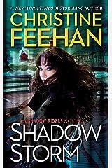 Shadow Storm (A Shadow Riders Novel Book 6) Kindle Edition