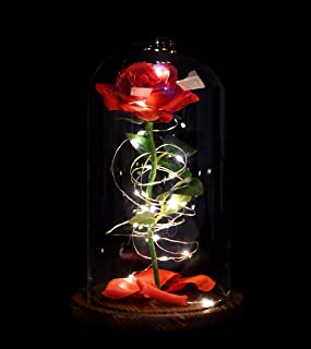 Snowkingdom Beauty The Beast Enchanted Rose in Glass Dome Red Flower LED Lamp Night Light with Fallen Petals on a Wooden Base Size 9x6 inch