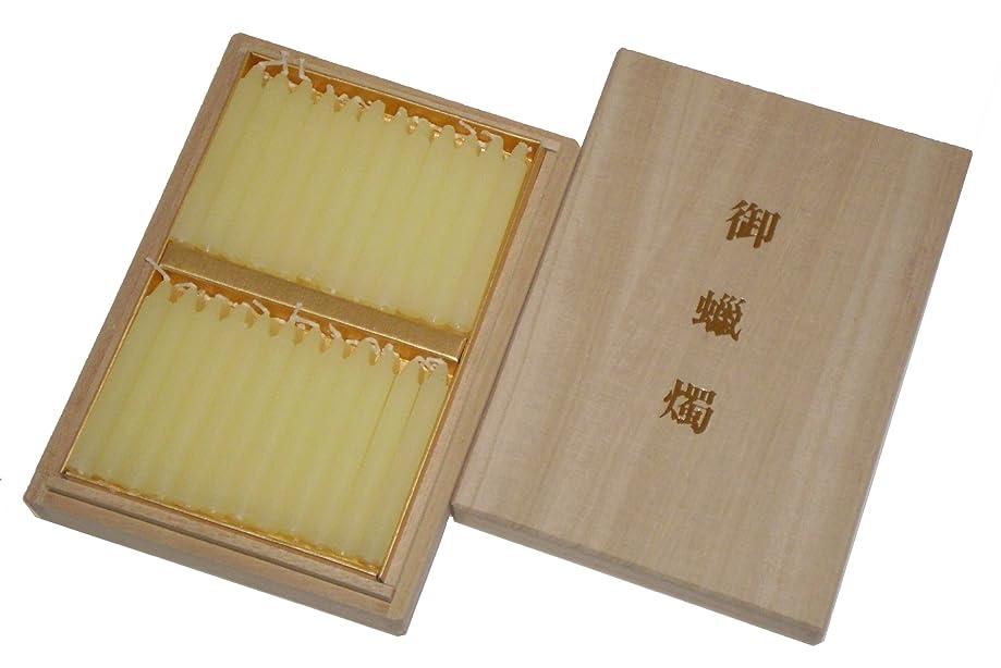 比類なき積極的に提供する鳥居のローソク 蜜蝋 あさみどり 太ダルマ48本入 桐箱 #100520