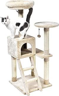 cat king tree